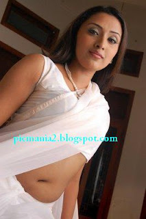 tamil film telugu actress megna nair hot transparent saree photo still