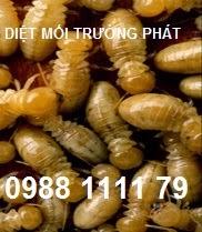 diet-moi--quan-1