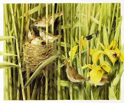 lukisan burung