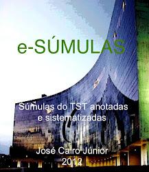 E-SÚMULAS (Livro eletrônico).Súmulas anotadas e sistematizadas, relacionadas com a CLT e OJs do TST