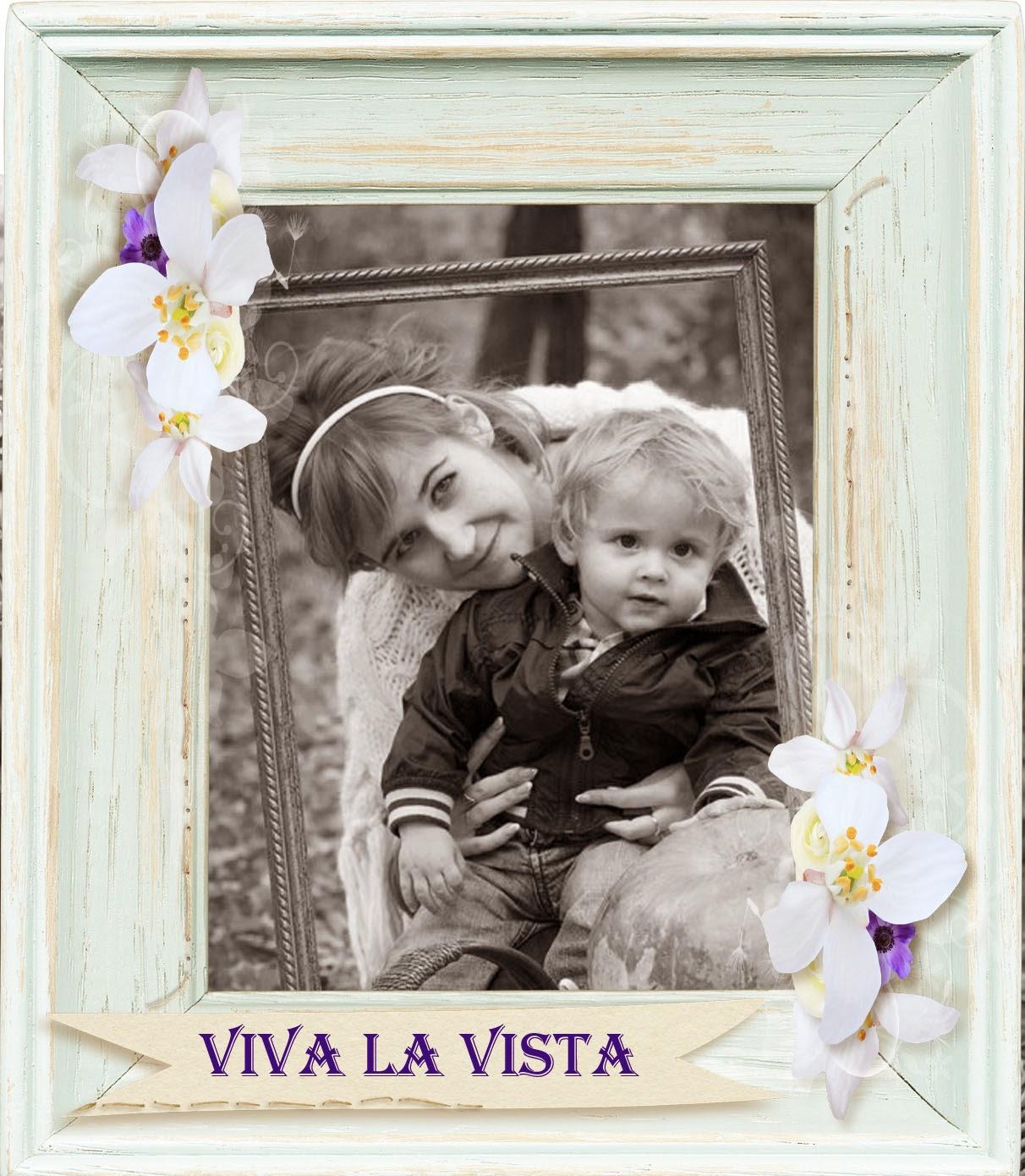 "Дизайнер блога ""Viva la Vista"""