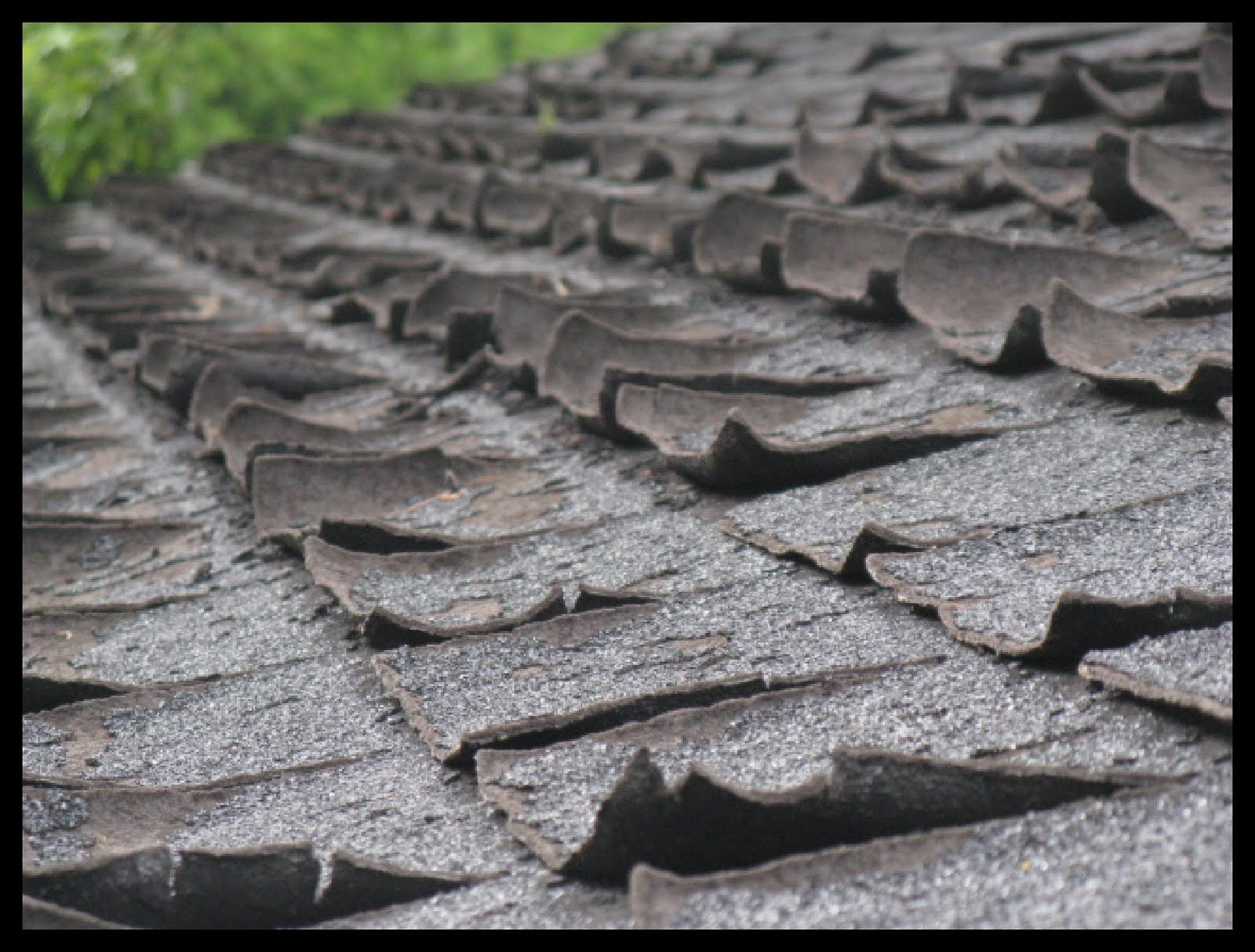 The roof repair viral infections blog articles - Roofs reason why you need a permanent one ...