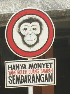 Tak pasal-pasal monyet pun kene label jugak...kikiki...