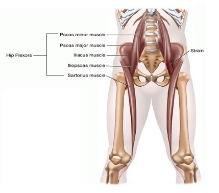 hip flexor pressure area