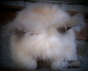 Introducing you to Calla Lili our new english angora doe born 12/12/2012.