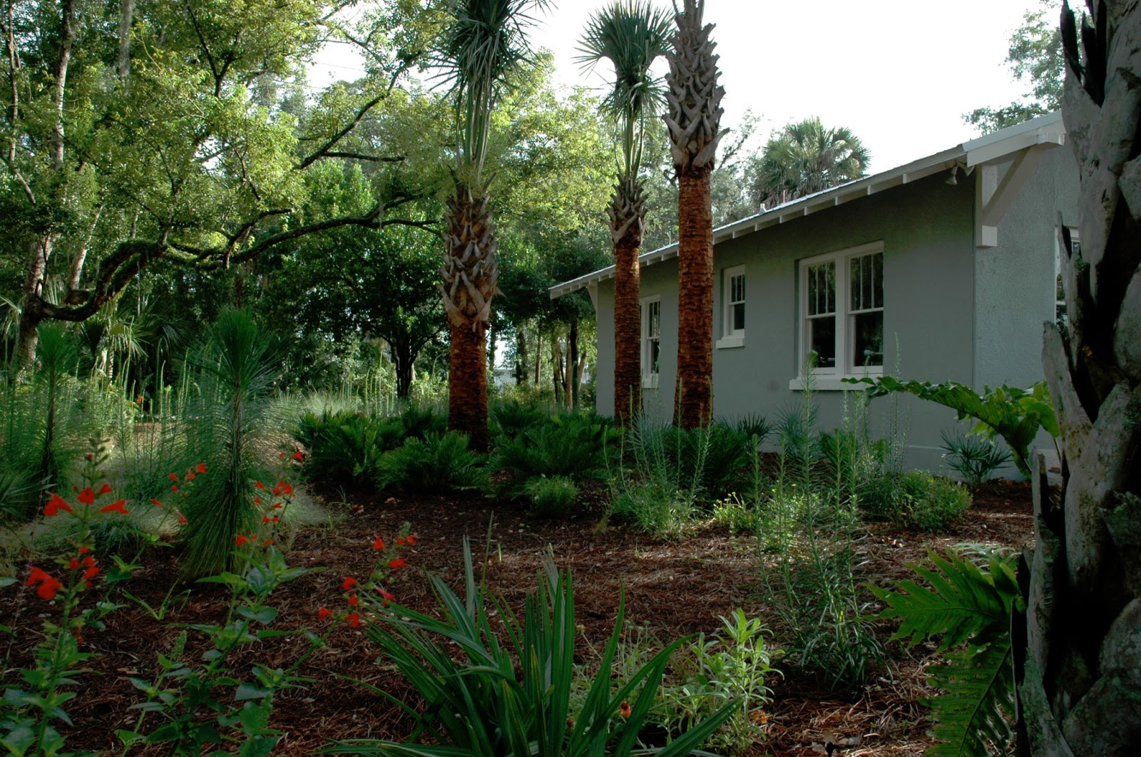 Florida Native Plant Show DixHite Partners Inc