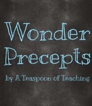 Wonder Precepts
