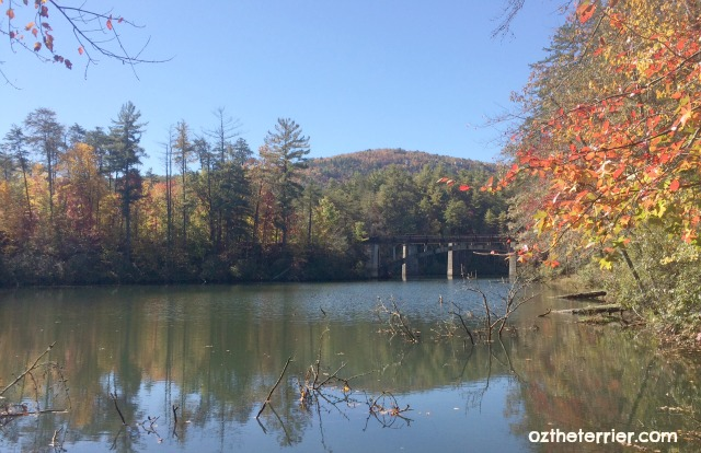 View of lake and old railway bridge on Terrora Trail in Tallulah Gorge State Park