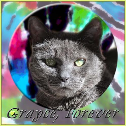 RIP GRAYCE