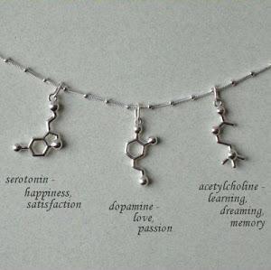 asetilkolin-dopamin-seratonin