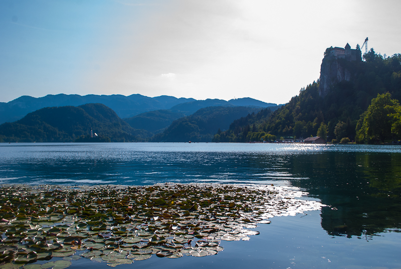 Scenic view of lake bled
