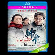 Coming Home (Gui lai) (2014) BRRip 720p Audio Dual Latino-Ingles
