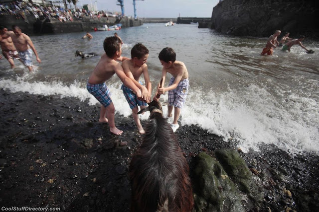 Children try to tighten the water goat during a festival in the Balearic Islands