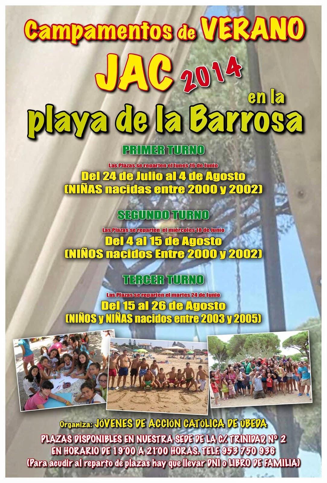 http://www.dechiclana.com/chiclana/playas/la-barrosa.php