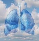 Alumnos/as con asma en la escuela