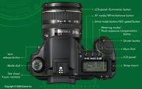 Cameras which Best