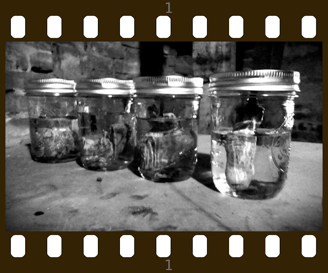 American Horror Story Inspired Preserved Organs DIY - Basement Horrors in Mason Jars - Great Craft Project for Halloween