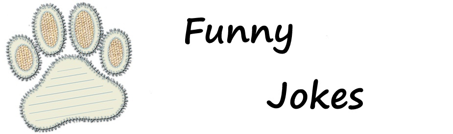 Funny Jokes
