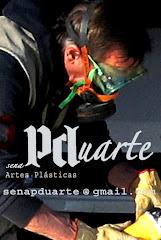 Paulo J. S. Duarte - Sena