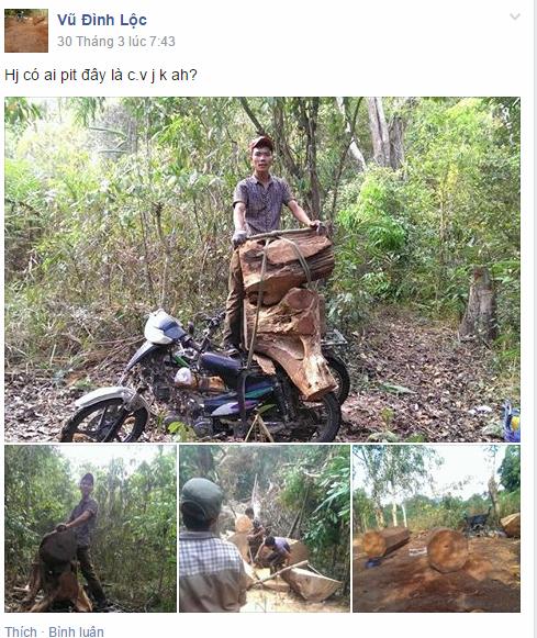"""Gia Lai: Tin mới nhất vụ lâm tặc """"tự sướng"""" và rao bán gỗ lên Facebook"""