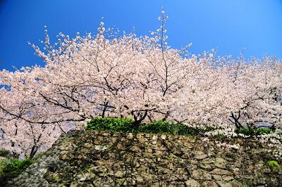 (Japan) – Travel to Fukuoka