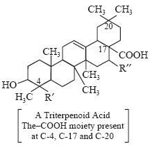 A Triterpenoid Acid