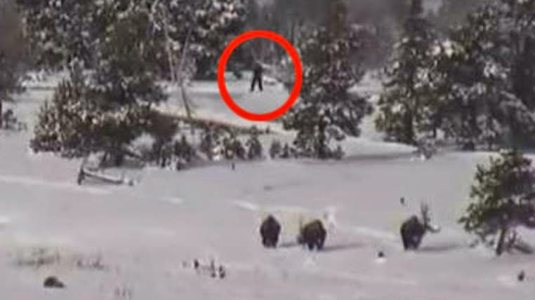 http://news.sky.com/story/1422469/has-bigfoot-been-spotted-at-yellowstone