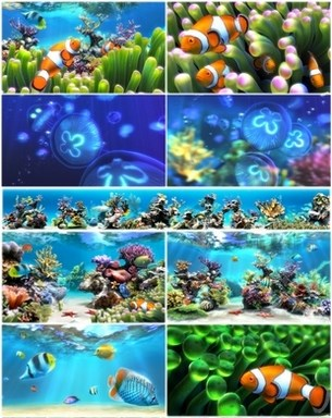 Sim+Aquarium+3.8+Build+58+Premium+Window