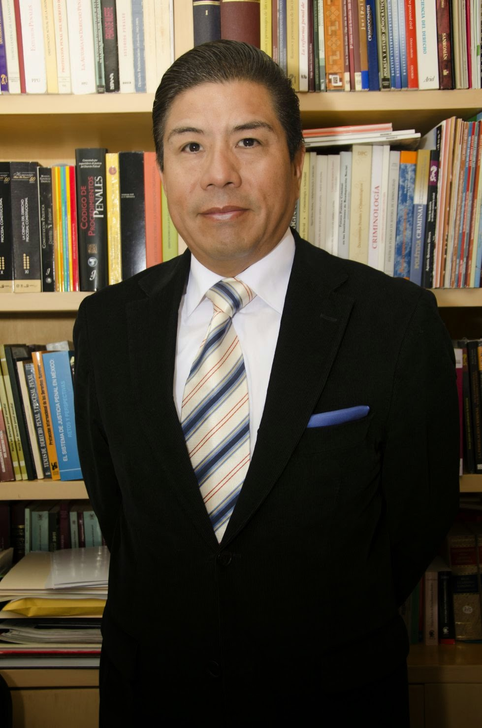 Enrique Diaz Aranda, Derecho Penal