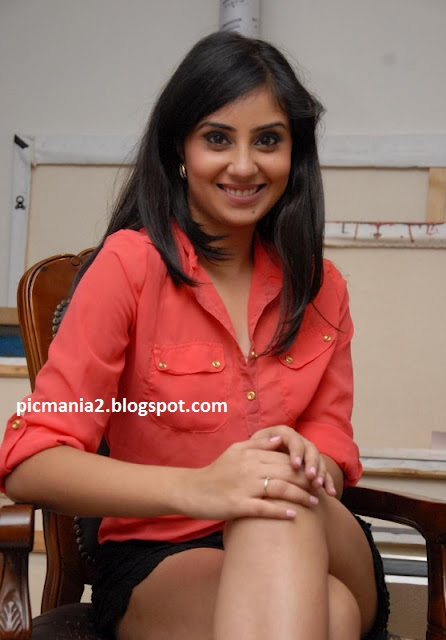Bhanu sri mehra showing hot thigh
