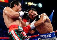 Video Juan Manuel Marquez Pukul KO Mammy Pacquiao