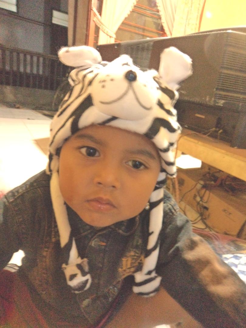 Topi Boneka Gajah Macan