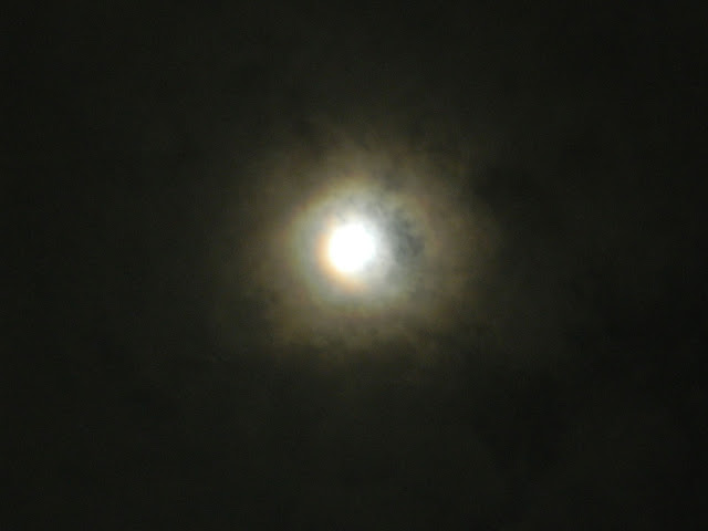 Meoww's Moon with double halo rings around it.