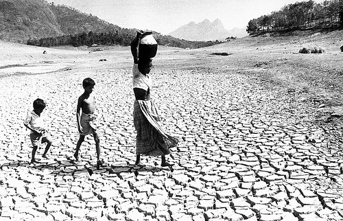 water scarcity telugu impact stories water scarcity