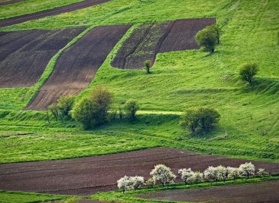 Spring in western Ukraine