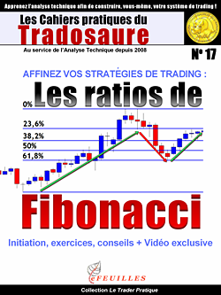 RATIOS FIBONACCI EBOOK VIDEO
