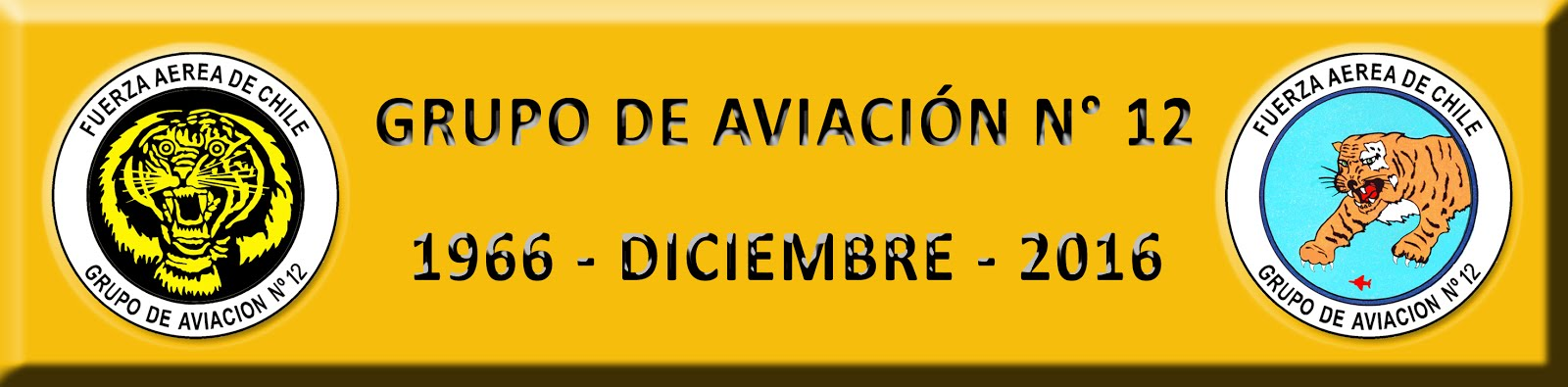 GRUPO de AVIACIÓN N° 12 - NO OFICIAL