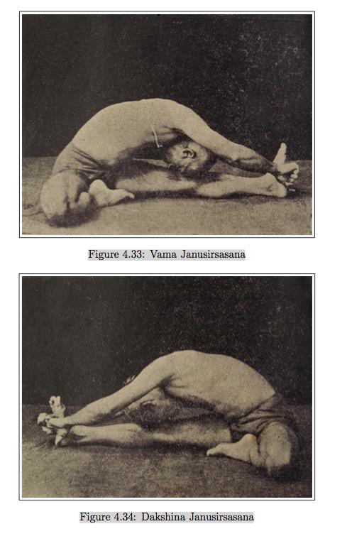 Krishnamacharyas Mysore Yoga Home Janusirsasana Examples