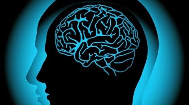 Fármaco contra a epilepsia pode combater Alzheimer