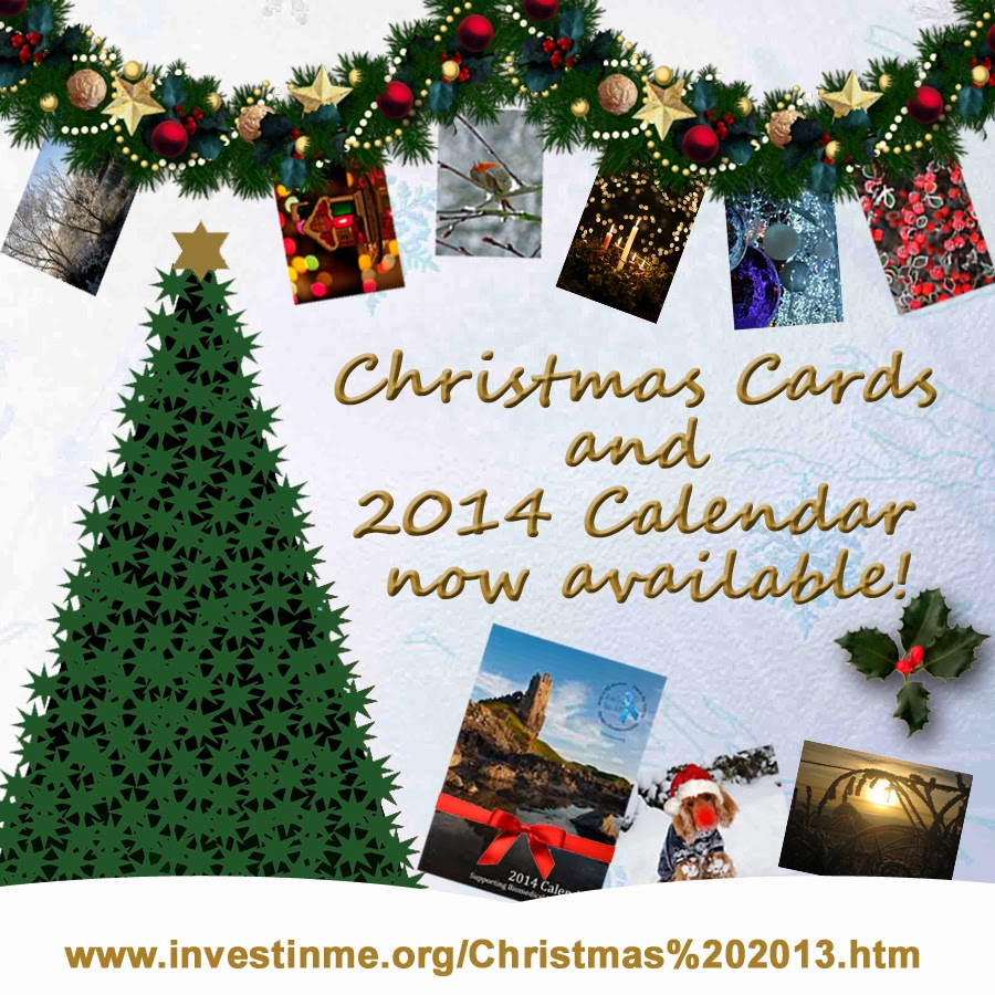 Let\'s Do It for ME!: Christmas Cards and 2014 Calendar now available!