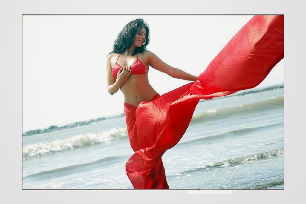 neeru bajwa exposing her hot sexy size zero body in red saree undressing her saree neeru bajwa