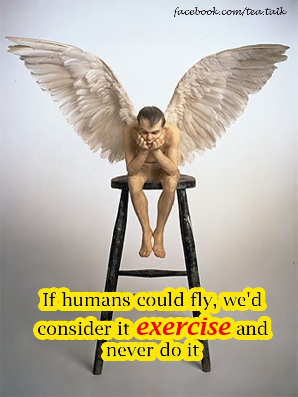 If humans could fly, we'd consider it exercise and never do it