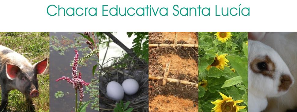 Chacra Educativa Santa Lucía