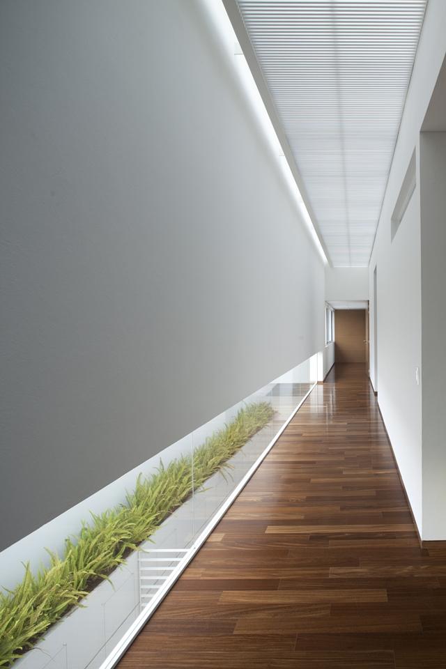 Modern white hallway with windows on the floor
