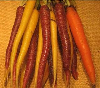 carottes colorees avec antioxydants