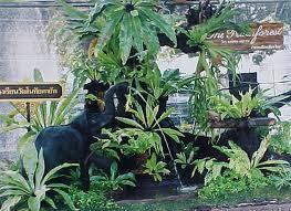 จัดสวน ไม้มงคล Garden Garland