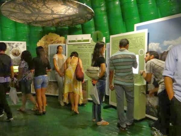 Exposição sobre a caatinga é montada no Parque do Povo
