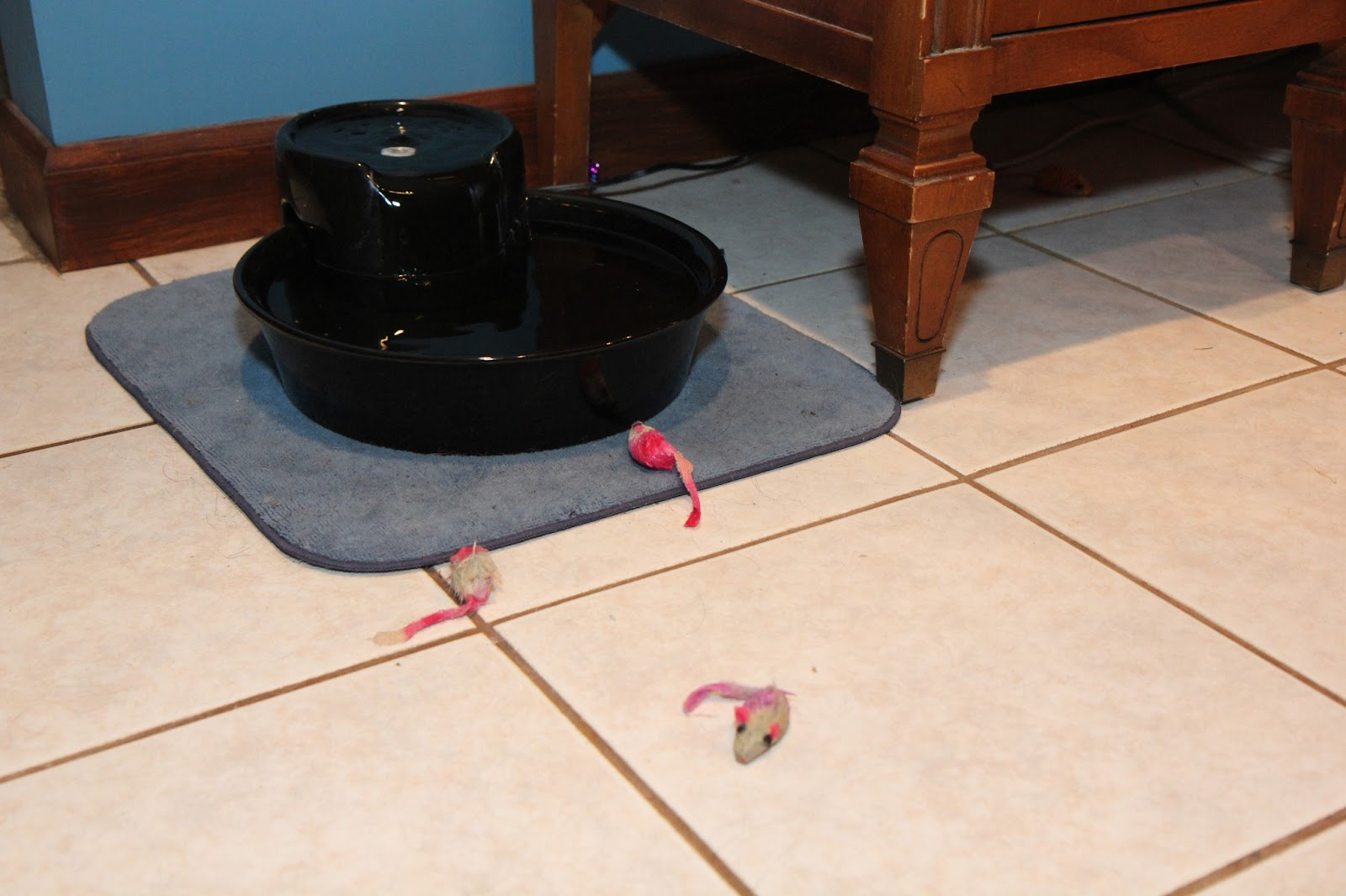 Three wet cat toys
