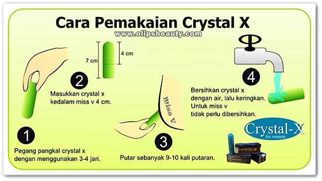 Cara dalam pemakaian Crystal X