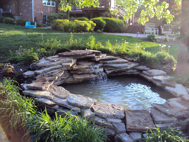 alluring back yard ponds simple water fall design lush natural stone line